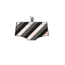 Badehose Glace Bay Brief Aquashort  von Speedo, 14 cm Beinlänge - Farbe: Black - 8071110001